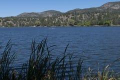 湖罗伯特,新墨西哥,岸线 库存照片