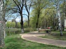 湖美丽的景色在早期的春天,莫斯科郊区 库存图片