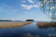 湖背景的海岛 库存照片