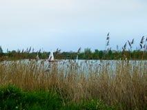 湖自然 免版税库存图片