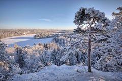 湖视图在冬天 图库摄影