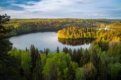 湖视图在芬兰 免版税图库摄影