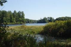 湖视图 库存图片