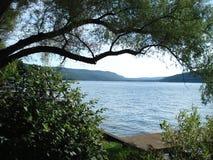 湖视图 免版税库存照片