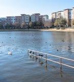 湖边与蓝天的公寓复合体在美国 免版税库存照片
