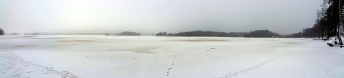 湖边在冬天 库存照片