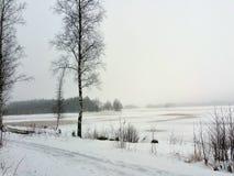湖边在冬天 免版税图库摄影