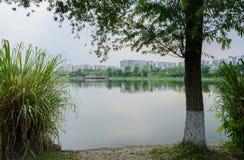 湖边城市在雨前的多云夏天早晨 库存照片