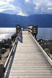 湖边平地手段 免版税图库摄影