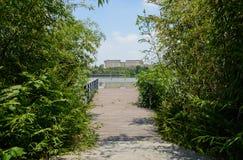 湖边操刀了并且planked有城市的平台在背景中  图库摄影