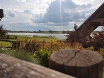 湖边晴朗的木看法  库存图片