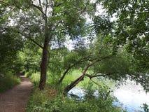 湖边步行 图库摄影