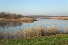 湖边秋天风景 库存照片