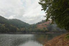 湖边视图 免版税库存图片