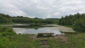 湖边视图 免版税图库摄影