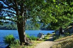 湖边道路,湖格里 库存照片