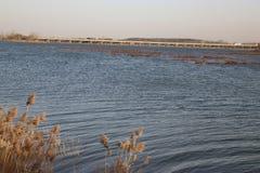 湖边高速公路 免版税库存照片