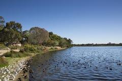 湖边3 图库摄影