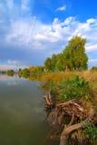 湖边 免版税库存照片