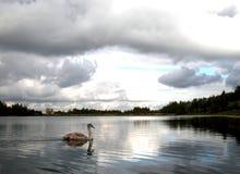 湖透视图 图库摄影