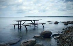 湖野餐 库存照片