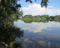 湖阿丽斯 库存图片