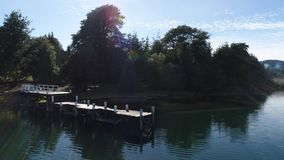 湖阿根廷寄生虫 影视素材
