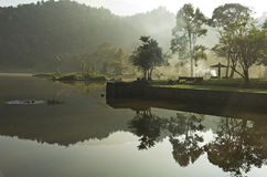 湖雨林反映 库存照片