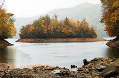 湖雨 库存照片