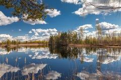 湖风景在夏天和蓝天 免版税库存图片