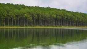 湖风景在夏天在大叻,越南 免版税库存照片