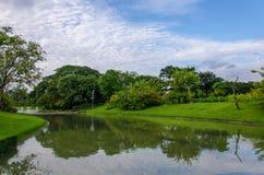 湖风景在春天公园 免版税库存照片