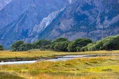 湖风景在西藏 免版税库存照片
