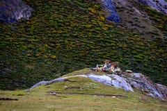 湖风景在西藏 免版税库存图片