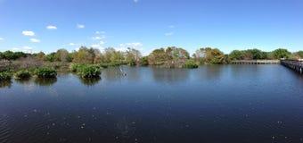 湖风景 库存图片