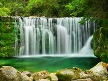 湖鲜绿色瀑布森林风景 库存图片