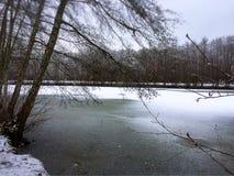 湖,公园,冬天在卢森堡,欧洲 库存照片