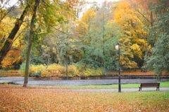 湖,放松的长凳在秋季公园 免版税库存照片
