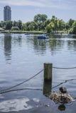 湖,海德公园 库存图片