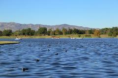 湖巴波亚公园在范Nuys,加利福尼亚 免版税库存图片