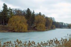 冻结湖 美丽的公园 库存图片