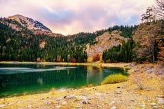 黑湖(Crno jezero),杜米托尔国家公园,黑山全景  免版税库存照片