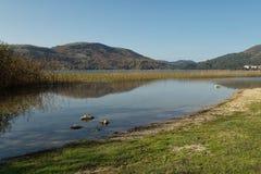 湖Abant 免版税库存图片