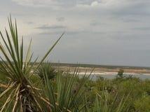 湖Amistad看法  免版税图库摄影
