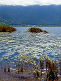 湖Beratan在Bedugul -巴厘岛013 免版税库存照片