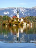 湖Bohinj秀丽在斯洛文尼亚 库存图片