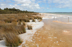 湖Clifton西方Aust风景视图。 免版税图库摄影
