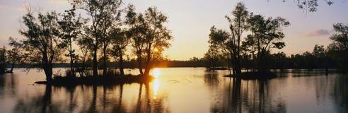 湖Fausse点国家公园, LA 库存照片