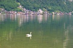 湖Hallstatt,奥地利,欧洲 库存照片