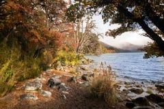 湖Hermoso,内乌肯省,阿根廷 免版税图库摄影